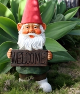 Welcome gnome magical